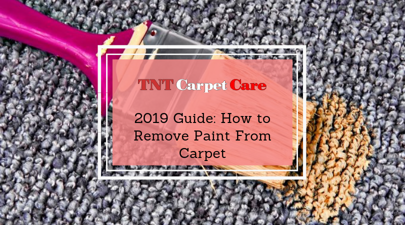 2019 Guide How to Remove Paint From Carpet