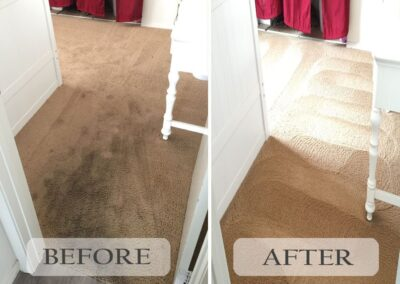Best Carpet Cleaning Services La Mesa
