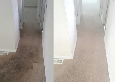Eco Friendly Carpet Cleaning El Cajon