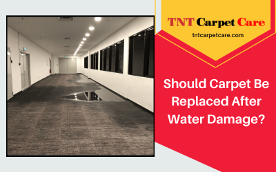 Should Carpet Be Replaced After Water Damage?