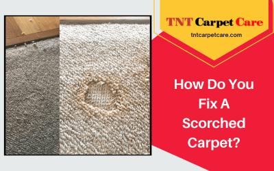 How Do You Fix A Scorched Carpet?